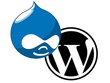 Convert Drupal website to Wordpress