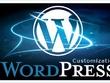 Customize your Wordpress template