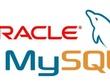 Develop any database Model, Querys Optimisation (ORACLE, MYSQL)