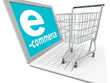 Import 600 products on your website