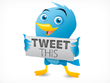 Create a months worth of Tweets for Twitter - increase engagement, retweets and SEO