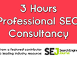 Offer 3 hours professional SEO consultancy
