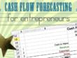 Prepare cash flow forecast (24 months)