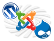 Install your website, database and Wordpress, Drupal or Joomla