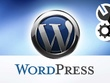 Work on your wordpress website for an hour