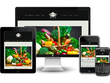Build your business a mobile responsive website