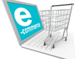 Develop a superb and massive e-commerce website for your business