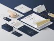 Complete premium brand identity with unlimited revisions