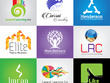 Design a professional vector logo within 24 hours