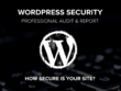 Run a Professional Security Audit on Your Wordpress Website