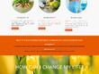 Design professional Wordpress Website along with SEO
