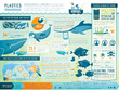 Design Fascinating & Jaw Dropping Vector Infographic with Unlimited Revisions