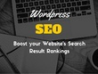 Fully SEO Optimize your Wordpress Website