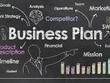 Write a investors' ready business plan