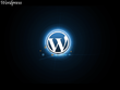 Help you customize  your WordPress site and repair error