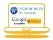 Set up a detailed & efficient e-Commerce AdWords PPC campaign