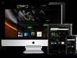 Build Responsive SEO Wordpress Website
