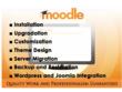 Do moodle installation or upgradation