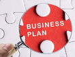 Develop a highly professional business plan with detailed financial projections