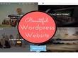 Professional wordpress developer creates  Website Blog Design or Themes