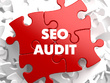Conduct a thorough SEO audit of your website including backlink profile & analysis