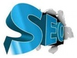 300 High Page Rank Manual Directory Submission + 40 Approved Directory Links