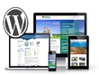 Build your WordPress Expert website