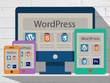 Develop a 100% responsive WordPress theme from a PSD