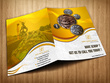 Design brochure/banner/flyer/poster with unlimited changes and source files