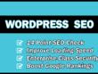 Professionally SEO your Wordpress website for higher Google rankings