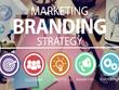 Design a Premium Logo (Inc 3 x Concepts) & Brand Identity