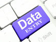 Do all kind of  of professional data entry 1 hour