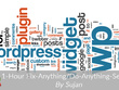 Provide 1-Hour Fix-Anything/Do-Anything-Session on your WordPress site
