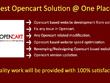 Develop secure, responsive, fast loading, SEO friendly Opencart Website