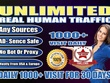 Drive 1000 USA Traffic Daily for 30 Days to your Website to boost your Google SERP