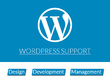 Offer 1 hour of WordPress Support