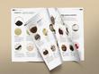 Create a premium professional bi-fold A4, A5 brochure