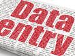 Design an Excel based Data Entry System