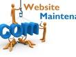 Maintain your WordPress website (5 days)
