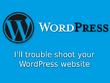 Trouble shoot your WordPress site