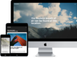 Get your purchased WordPress theme installed Exactly like the Demo