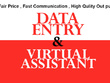 Provide one day (10 hours) data entry and virtual assistant work (50% discount now)