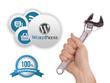 Fix Wordpress error, issue and bugs