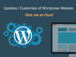Provide hour of WordPress updates, maintenance or customization