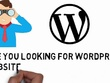Design and Develop Responsive SEO friendly & Professional WordPress Website / Blog