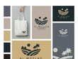 Design your logo and brand board