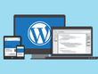 Develop SEO friendly Wordpress website