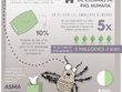 Design an original Infographic for you, with option for layouts