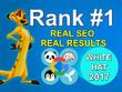 Create 100% Manually 55 PR10 High Authority Backlinks with Keywords Strategy