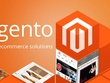 Build a Responsive Ecommerce website in Magento